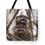 Raccoon Siblings Tote Bag