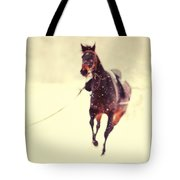 Race In The Snow Tote Bag