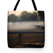 Race Of The Deere's Tote Bag