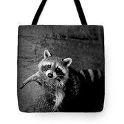 Racoon Bandit Tote Bag