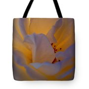 Radiance Tote Bag by Cathleen Cario-Reece