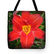 Radiant In Red - Daylily Tote Bag