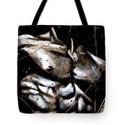 Rafael - Study No. 1 Tote Bag