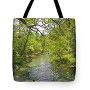 Rafting The Springs Tote Bag