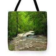 Raging Waters - West Virginia Backroad Tote Bag