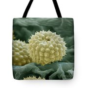 Ragweed Pollen Tote Bag