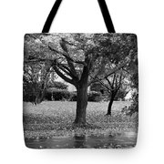 Rain And Leaf Ave In Black And White Tote Bag