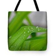 Rain Beads IIi Tote Bag