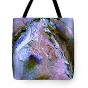 Rain Dancer Tote Bag