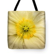 Rain Drenched Yellow Poppy Tote Bag