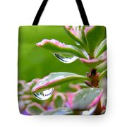 Raindrops On Sedum Tote Bag
