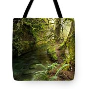 Rain Forest 2 Tote Bag