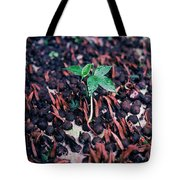 Rain Forest Seedling, Indonesia Tote Bag