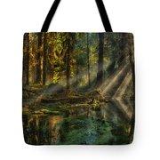 Rain Forest Sunbeams Tote Bag