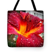 Rain Kissed Lilly Profile 1 Tote Bag