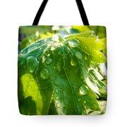Rain Soaked Leaf Tote Bag