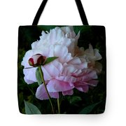Rain-soaked Peonies Tote Bag
