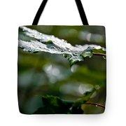 Rain Sparkles Tote Bag