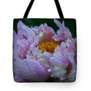 Rain Tossed Tote Bag