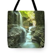 Rainbow Falls Bridge Tote Bag