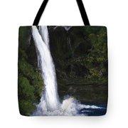 Rainbow Falls Hilo Hawaii Tote Bag