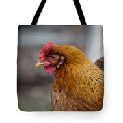 Rainbow Hen Tote Bag