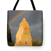 Rainbow New Year 2013 Tote Bag