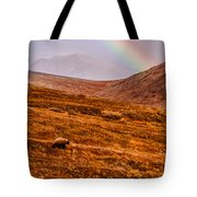 Rainbow Over Grizzly In Denali Tote Bag