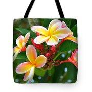 Rainbow Plumeria - No 4 Tote Bag