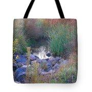 Rainbow Pond Tote Bag