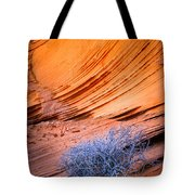 Rainbow Rocks Dead Bush #1 Tote Bag