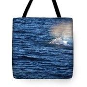 Rainbow Spout Tote Bag