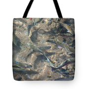 Rainbow Trout Art Prints Canvas Framed Tote Bag