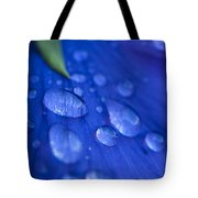 Raindrop Pansy Tote Bag by Anne Gilbert