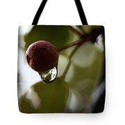 Raindrop Reflection 1 Tote Bag