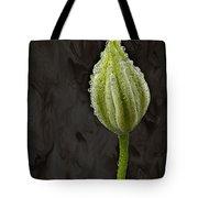 Raindrops Keep Falling Tote Bag