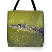 Raindrops Keep Falling Tote Bag