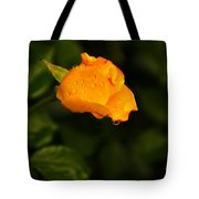 Raindrops On A Yellow Rose Tote Bag