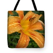 Raindrops On Golden Lily Tote Bag