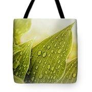 Raindrops On Hostas Tote Bag