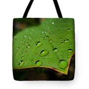 Raindrops On Plumeria Leaf Tote Bag