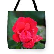Raindrops On Rosebud Tote Bag