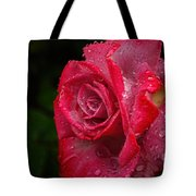 Raindrops On Roses Tote Bag by Peggy Hughes