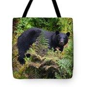 Rainforest Black Bear Tote Bag