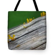 Rainforest Blooms Tote Bag