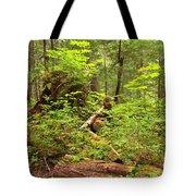 Rainforest Green Everywhere Tote Bag