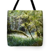 Rainforest Landscape Tote Bag