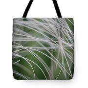 Rainforest Palm Tree Leaf Close Up  Tote Bag