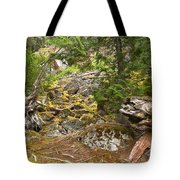 Rainforest Rock Slide Tote Bag