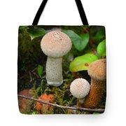 Rainforest 'shrooms Tote Bag
